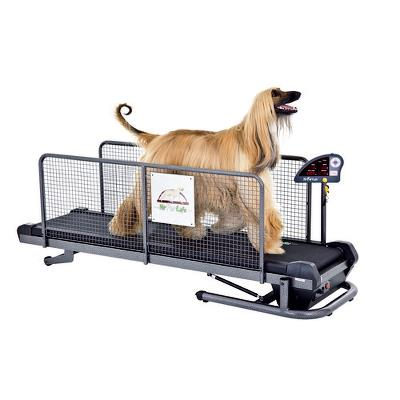 Dog treadmill, Fit Fur Life, Professionel, max. 135kg