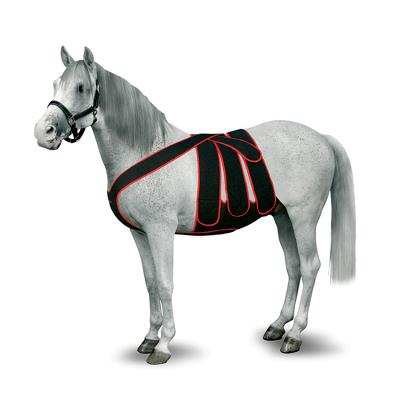 KRUUSE Equine Post Colic Surgery Kit, size M